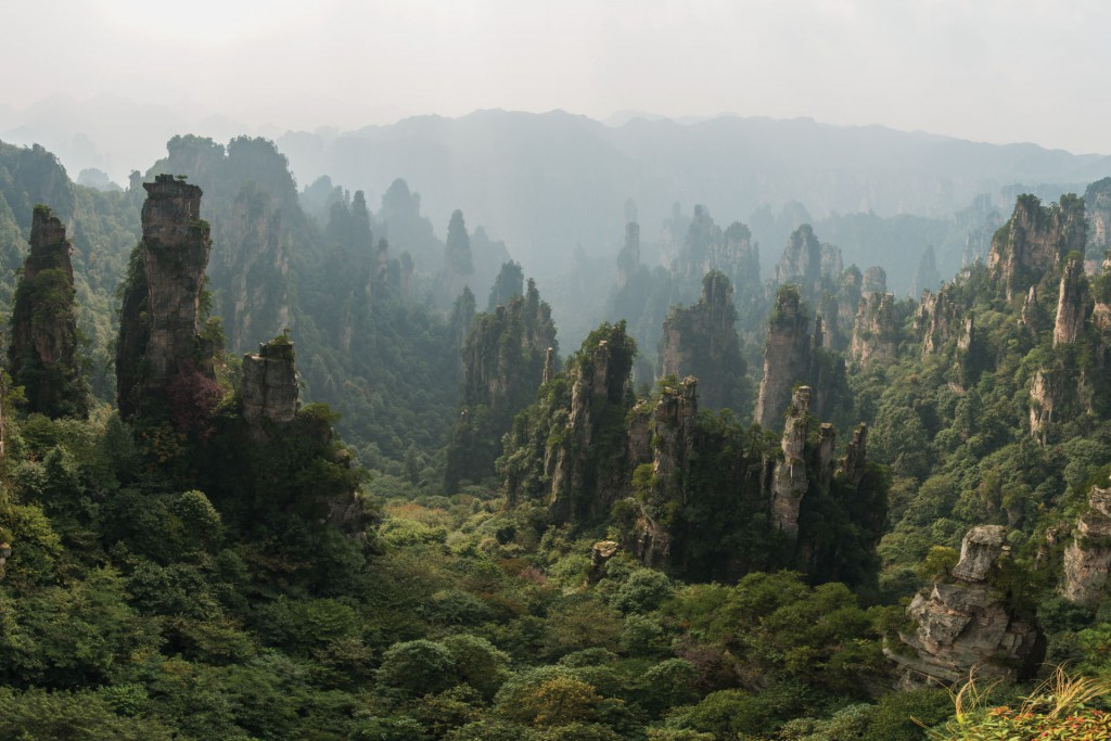 The hills of Wulingyuan in Zhangjiajie